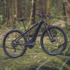 Electric Bikes E-Mountain Hardtails